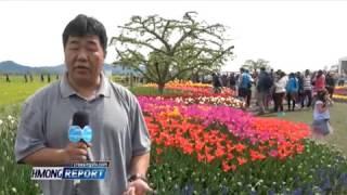 Hmong Report Apr 20 2017