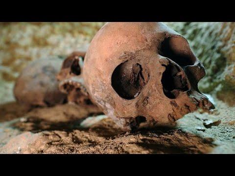 العثور على مقبرة فرعونية تحتوي على أكثر من 1000 تمثال كامل و40 تابوتا …  - نشر قبل 3 ساعة
