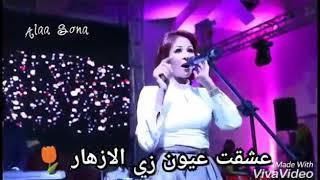 Download Video حالات واتساب سودانية نانسي عجاج MP3 3GP MP4