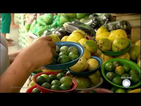 Teste Do Instituto Biológico Revela Quais São Os Alimentos Da Feira Com Maior Dose De Agrotóxicos