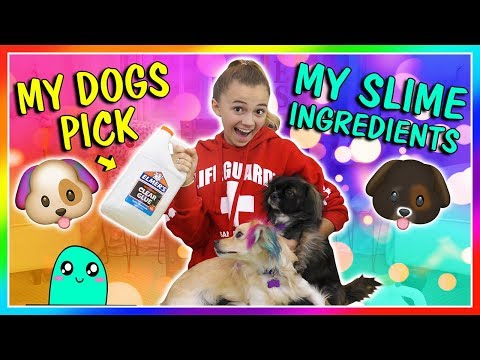 MY DOGS PICK MY SLIME INGREDIENTS | We Are The Davises