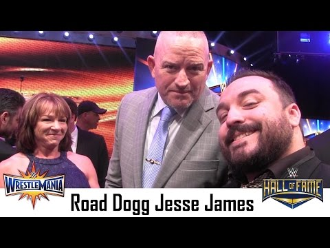 Road Dogg Jesse James | Interview Wrestlemania 33 Hall of Fame Ceremony