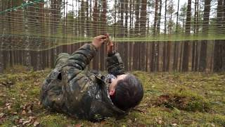 Глухарь: отлов, мечение, радиослежение. Western capercaillie: catching, tagging and tracking.