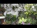 【オープンガーデン⑤】鉢、花壇のみの小ぶりでセンスのよい道路に面した庭