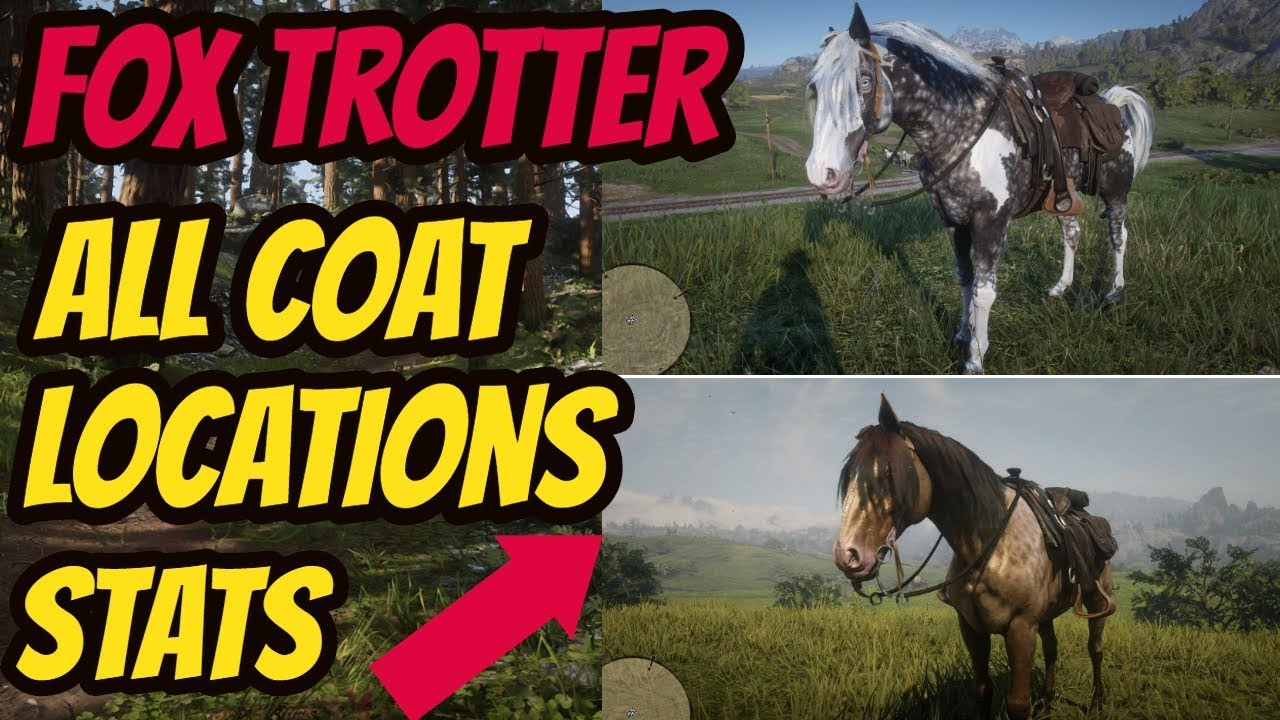 Red Dead Redemption 2 Missouri Fox Trotter Horse Location All