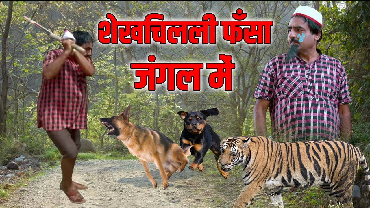 शेखचिल्ली फसा जंगल मे || new shekhchilli comedy 2021 || shekhchilli ki khani