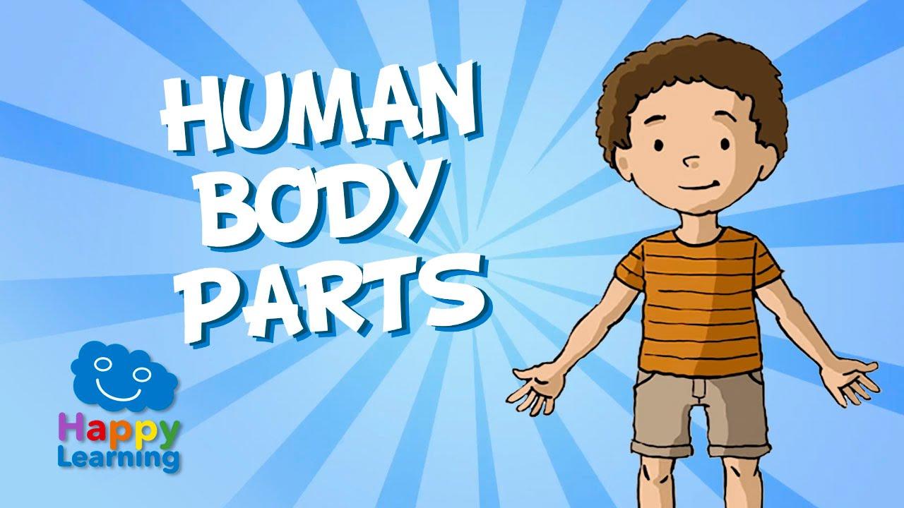 Aprende Inglés. Las Partes del Cuerpo Humano en Inglés. Videos ...