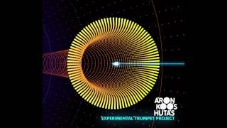 Aron Koos-Hutas feat Zeek - Moog Morning