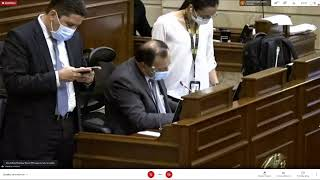 Plenaria Camara de Representantes 18/06/2021
