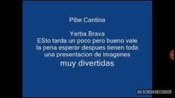 Pibe Cantina Yerba Brava