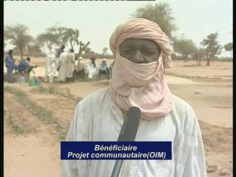 projet Jeunes pour la paix et le developpement Hacp Niger à Tassara et Tchinta