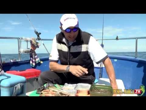 Pesca dalla Barca sulle tegnue di Caorle in Alto Adriatico