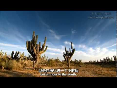 【BBC纪录片】北回归线(6集全)西撒哈拉至利比亚 Western·Sahara to Libya