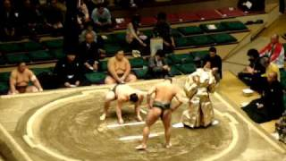 Peleas de Sumo