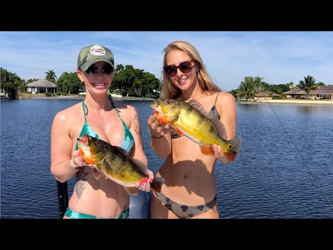 BIKINI Peacock Bass Fishing