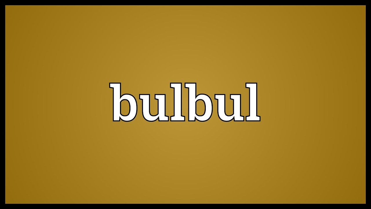 Bulbul Meaning Youtube Some ninjas are using zetsu and cutting onions behind you. bulbul meaning