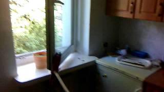 Gołębie w kuchni impreza gołąb
