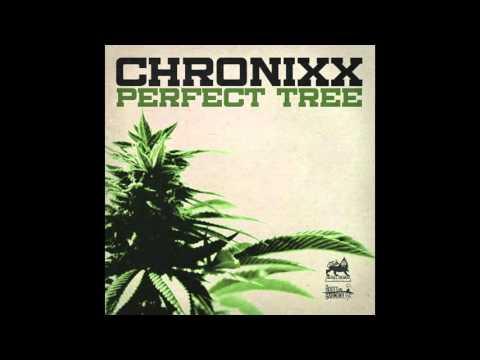 Chronixx - Perfect Tree [Official Audio]