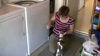 Dog Trick Training Teaching Your Dog Not To Bark