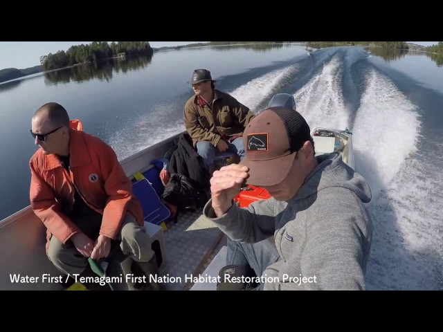 Water First - Temagami First Nation Habitat Restoration Project