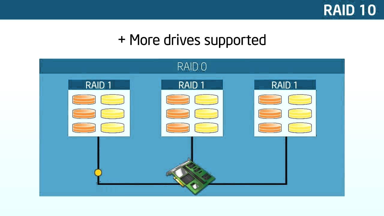 RAID BASICS TRAINING GUIDE – ServerWare®