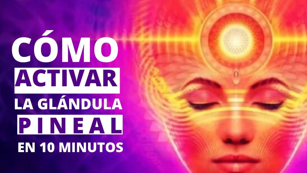 Cómo Activar La Glándula Pineal En 10 Minutos Con Meditación Guiada Tercer Ojo Youtube