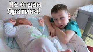 VLOG: У нас хотят забрать ребенка / Красная попка