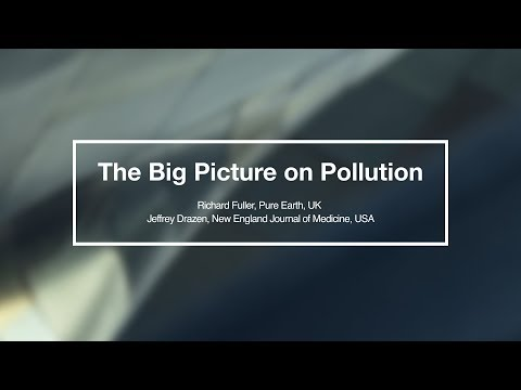 The Big Picture On Pollution  Richard Fuller & Jeffrey