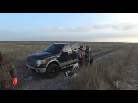 January 2016 Pheasant Hunt Drone Video