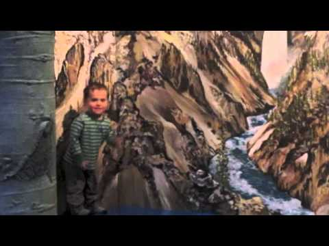 Bozeman MT, Museum of the Rockies, Dinos & Gekkos