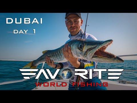 Слоу джиггинг и барракуда-налоговик. Морская рыбалка в Дубае. День 1. Favorite World Fishing.