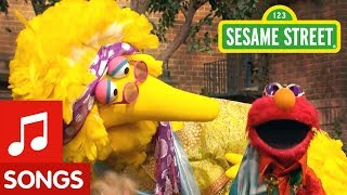 Sesame Street The Song About Hair Feathers and Fur