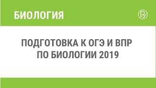 Подготовка к ОГЭ и ВПР по биологии 2019