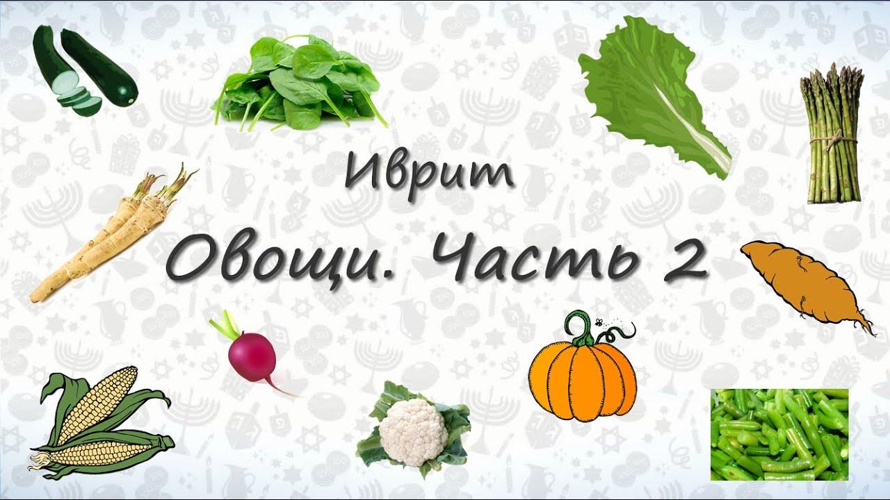 Урок иврита для начинающих - Овощи на иврите. Часть 2