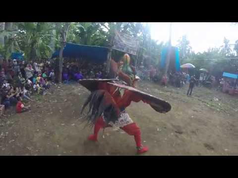 PITIK TARUNG. Seni Barong Muncul Budoyo - Beran Lor. Banyuwangi.
