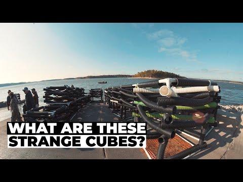 These Cubes Improve Fishing // Lake Shelbyville Fish Habitat Project