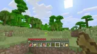 Minecraft xbox 360 Let