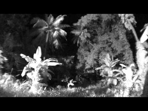 Ghost Hunters International - Ghoul