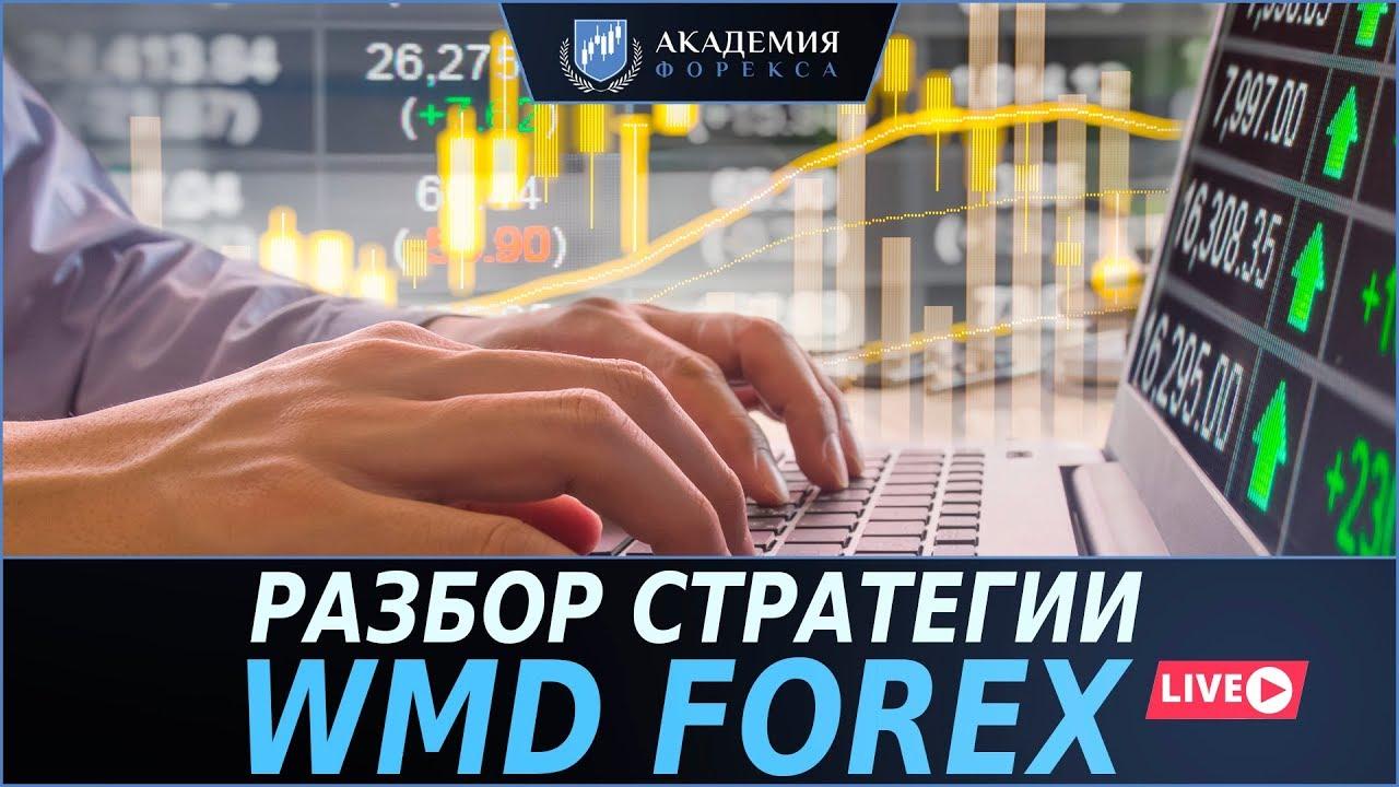 Разбор стратегии WMD Forex | На что способна стратегия за £5.495?