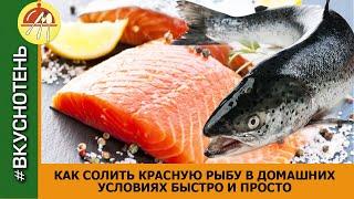 Солим красную рыбу 3 лучших рецепта засолки красной рыбы в домашних условиях