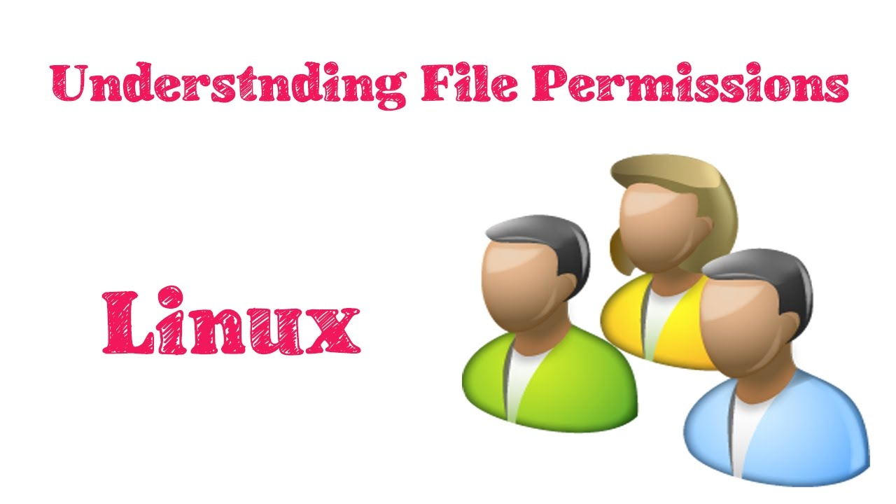 how to give permission to user in linux