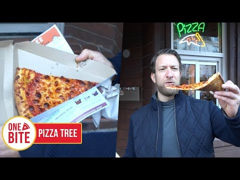 Barstool Pizza Review - Pizza Tree (Columbia, MO)