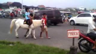kuda putih.3gp