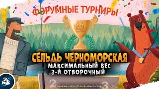 Русская Рыбалка 4 Форумный турнир Дневной лайт
