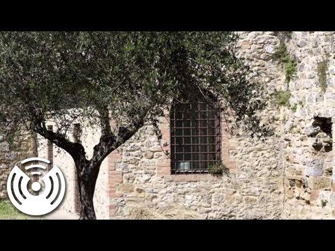 Vox Nostra - Gregorian Chant: In Exitu Israel De Aegypto