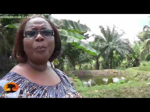 Isabelle AMEGANVI présente sa pisciculture: Nous ne donnons pas du poisson, nous apprenons à pêcher
