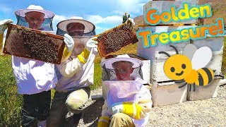 Millions of Bees! Finding the Bees' Treasure in the Mr. E Mansion Backyard! / The Beach House