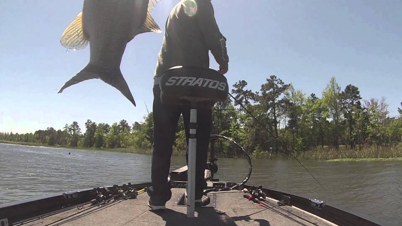 Bass fishing road trip to lake moultrie youtube for Lake marion fishing report