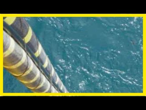 Mixed reaction to feasibility study for second bass strait electricity cable