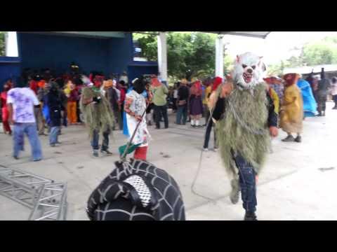 Carnaval las palmas pantepec puebla